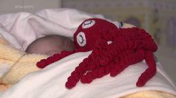 Polvo que alivia a ansiedade dos bebês, em UTIs