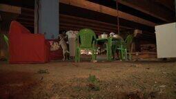 Moradores que foram despejados de Conjunto em Rio Largo não têm para onde ir