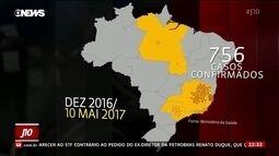 Pesquisadores descobrem mutações no vírus da febre amarela que provoca surto no Brasil