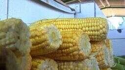 Começa procura por produtos juninos na Ceasa de Aracaju