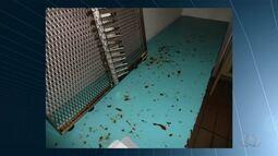 Parte do Hospital Materno Infantil é interditada em Goiânia
