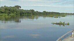 Fenômeno da decoada dificulta pesca no Pantanal de MS