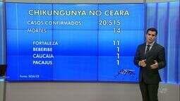 Ceará tem 14 mortes por febre chikungunya neste ano