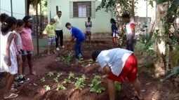 Escola de Governador Valadares ensina crianças na prática sobre plantio e colheita