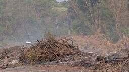 Moradores de Dourados, MS, sofrem com falta de chuva e fumaça