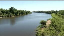 Produtores fazem bombeamento alternativo para evitar seca no rio Formoso, no sul do TO