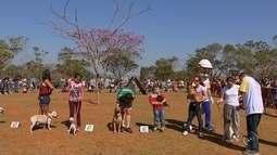 Estimacão 2017 reúne cerca de nove mil pessoas em Itapetininga