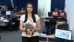 Confira os destaques do G1 Itapetininga e região com Paola Patriarca
