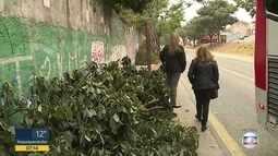 Galhos deixados em calçada de Itaquera atrapalham pedestres
