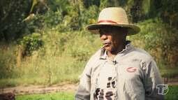Em Mojuí dos Pereiras, agricultores apostam em sistema de irrigação