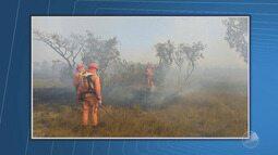Incêndio em reserva ecológica e vazamento de água são destaques na Previsão do Tempo