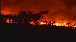 Incêndio de grandes proporções é controlado entre Uberaba e Conceição das Alagoas