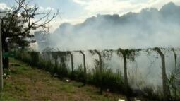 Bombeiros apagam incêndio em terreno de fábrica desativada em Governador Valadares