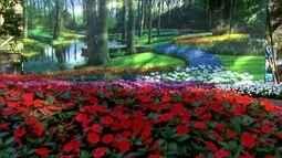 Maior exposição de flores do Brasil deve receber 300 mil visitantes em Holambra