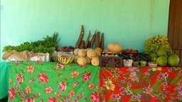 Em Assu, famílias mostram experiência de sucesso com produção de legumes e hortaliças
