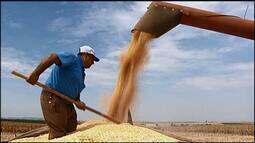 Atraso no período de chuvas preocupa produtores de grãos no Triângulo Mineiro