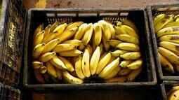 Preço da banana desanima produtores no Triângulo Mineiro
