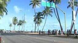 Coqueiros carregados de cocos geram insegurança na orla de Maceió