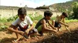 Projeto 'Mãos na Terra' ensina alunos sobre educação alimentar