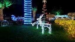 Em Movimento: Confira o 'Brilho de Natal' em Domingos Martins