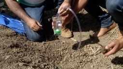 Inter TV Rural relembra técinica que auxilia irrigação no campo