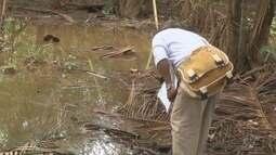 Vigilância orienta moradores de Cacoal a manterem quintais limpos