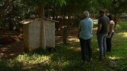 Macaco é encontrado morto em chácara de Novo Gama