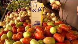Quilo do tomate está mais barato em Petrolina