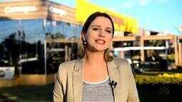 Confira o comentário da Gisele Loeblein sobre cultivo de soja no RS