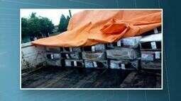 Merenda escolar é transportada em caminhão com fezes de gado em Acrelândia