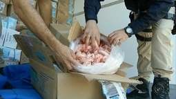 Carga apreendida de frutos do mar avaliada em R$ 300 mil será descartada, diz PRF