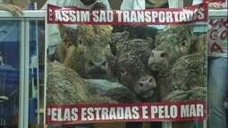 PL que proíbe embarque de carga viva no Porto de Santos foi aprovado em primeira discussão