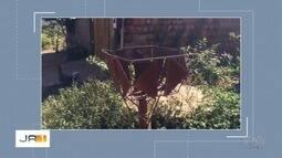 Após reportagem, mulher tem lixo recolhido na porta de casa, em Aparecida de Goiânia