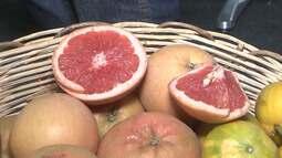 Pomelo é um dos destaques da maior feira de fruticultura irrigada da América Latina