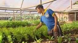 Parte 1: Resíduos de açaí são usados para adubo em hortas orgânicas no Amapá