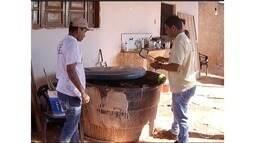 Mesmo no período de seca, cuidados com a dengue devem ser mantidos pela população