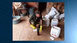 Mirante Rural destaca fiscalização de combate a venda de agrotóxicos contrabandeados no MA