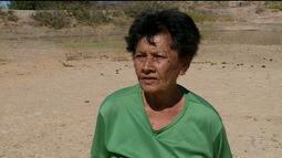 Agricultores de Petrolina contabilizam prejuízos pela falta de água