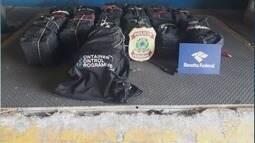 Mais de 400 kg de cocaína são apreendidos no Porto de Santos