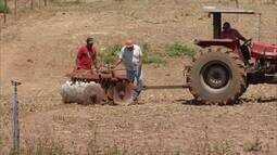 Preparo da terra para o plantio começa a ser feita para as chuvas a partir de outubro