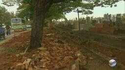 Forte chuva derruba parte do muro de cemitério de São Carlos