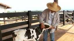 Sem peão para a lida com o gado na região de Itapetininga