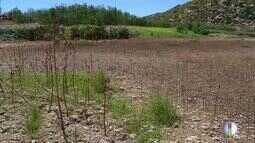 Após 7 anos de chuvas abaixo da média, situação hídrica do RN preocupa produtores