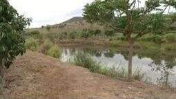 Fazenda no Leste do Estado se destaca pela produção sustentável