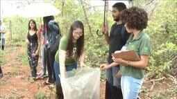 Estudantes aprendem como identificar e fazer o registro das plantas