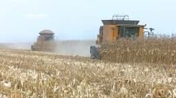 Parte 1: Produtores rurais devem se adaptar ao sistema do eSocial