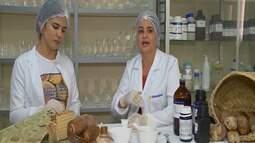 Estudantes desenvolvem creme hidratante com óleo de babaçu em Imperatriz