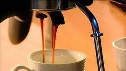 Estudo diz que 60% das espécies de café selvagem correm risco de extinção