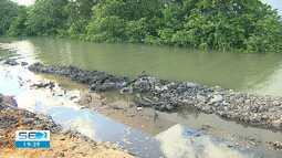 Dois pontos de mangue estão passando por mudanças em Aracaju