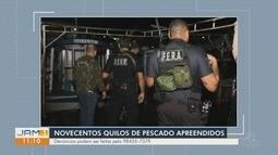 Após denúncias, mais de 900 quilos de pescado é apreendido em feira de Manaus